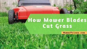 featured image for how mower blades cut grass