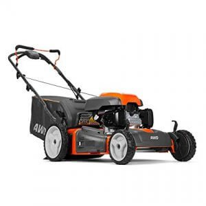 picture of a push mower
