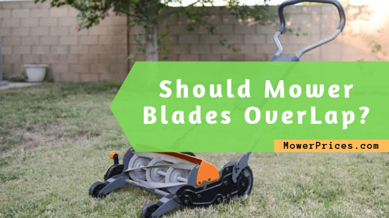 featured image for multiblade mowers