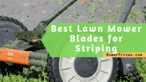 featured image for Best lawn mower blades for striping