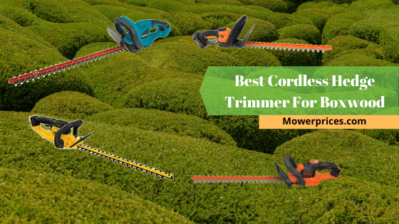 Best Cordless Hedge Trimmer For Boxwoods