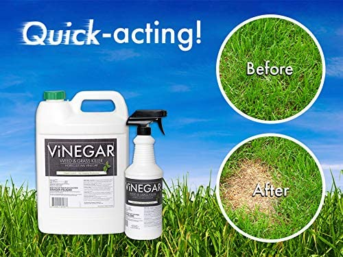 vinegar weed killer mixture