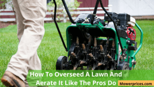 How To Overseed A Lawn And Aerate It Like The Pros Do