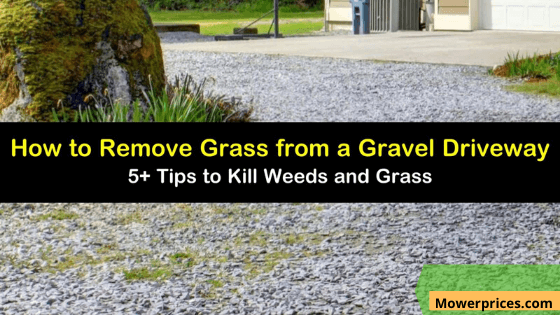 How To Kill Weeds in gravel driveway
