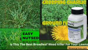 best broadleaf weed killer for lawns