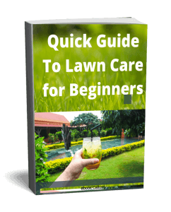 Free Lawn Care For Beginners Guide
