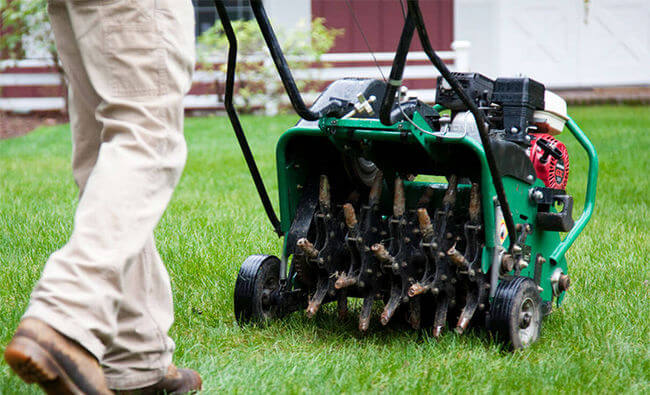 how to aerate and overseed lawn