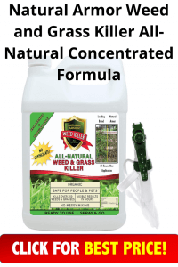 Natural Armor Weed and Grass Killer All-Natural Concentrated Formula