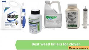 best weed killer for clover