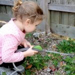 Family-Friendly Weed Killer