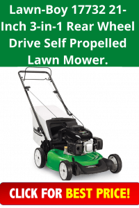Lawn-Boy 17732 21-Inch 3-in-1 Rear Wheel Drive Self Propelled Lawn Mower.