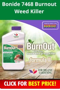 Bonide 7468 Burnout Weed Killer